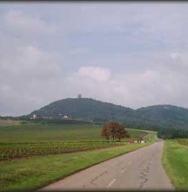 Vršačke planine – planinarski dom Široko bilo (246mnv)