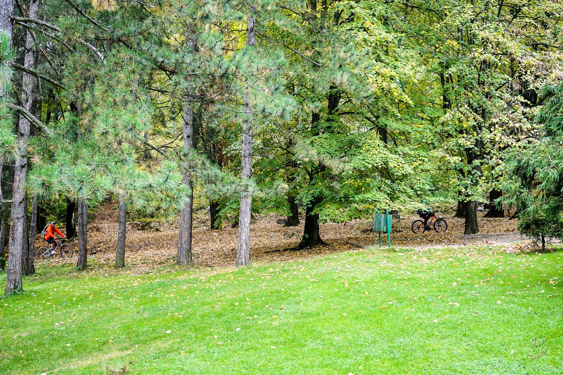 U šumi su već neki biciklisti...