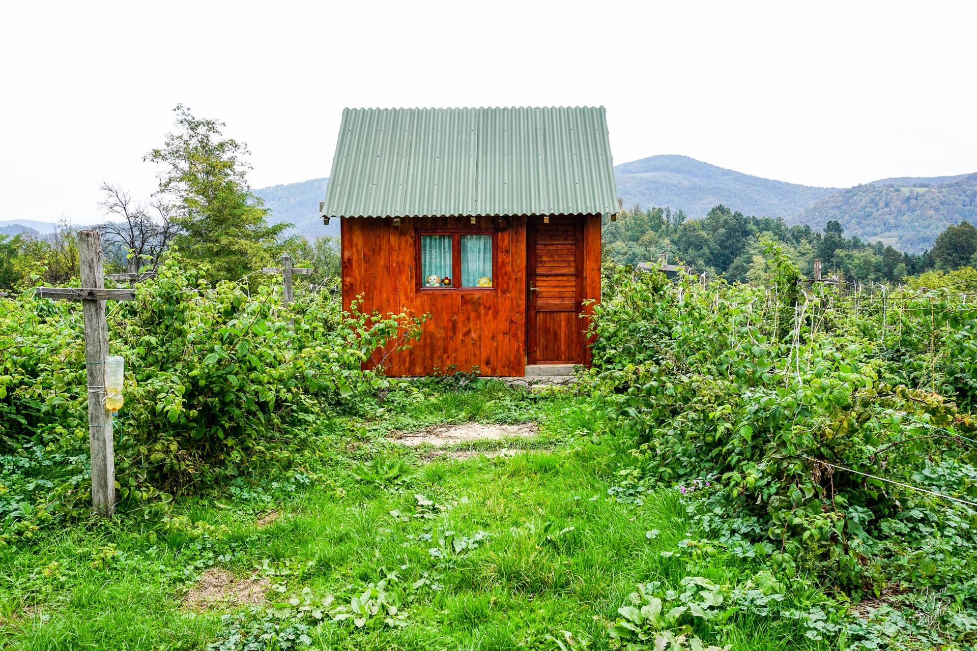Ali tu je i kućica u vinogradu...
