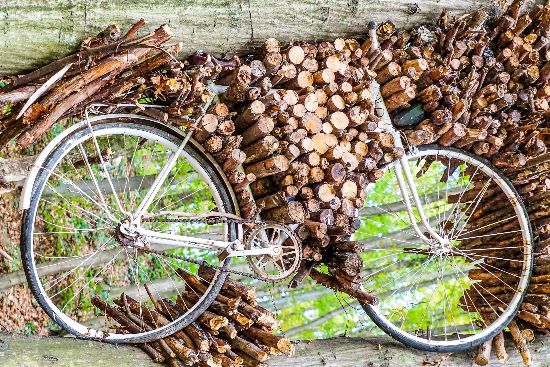 ... i ugradili bicikl u drvo